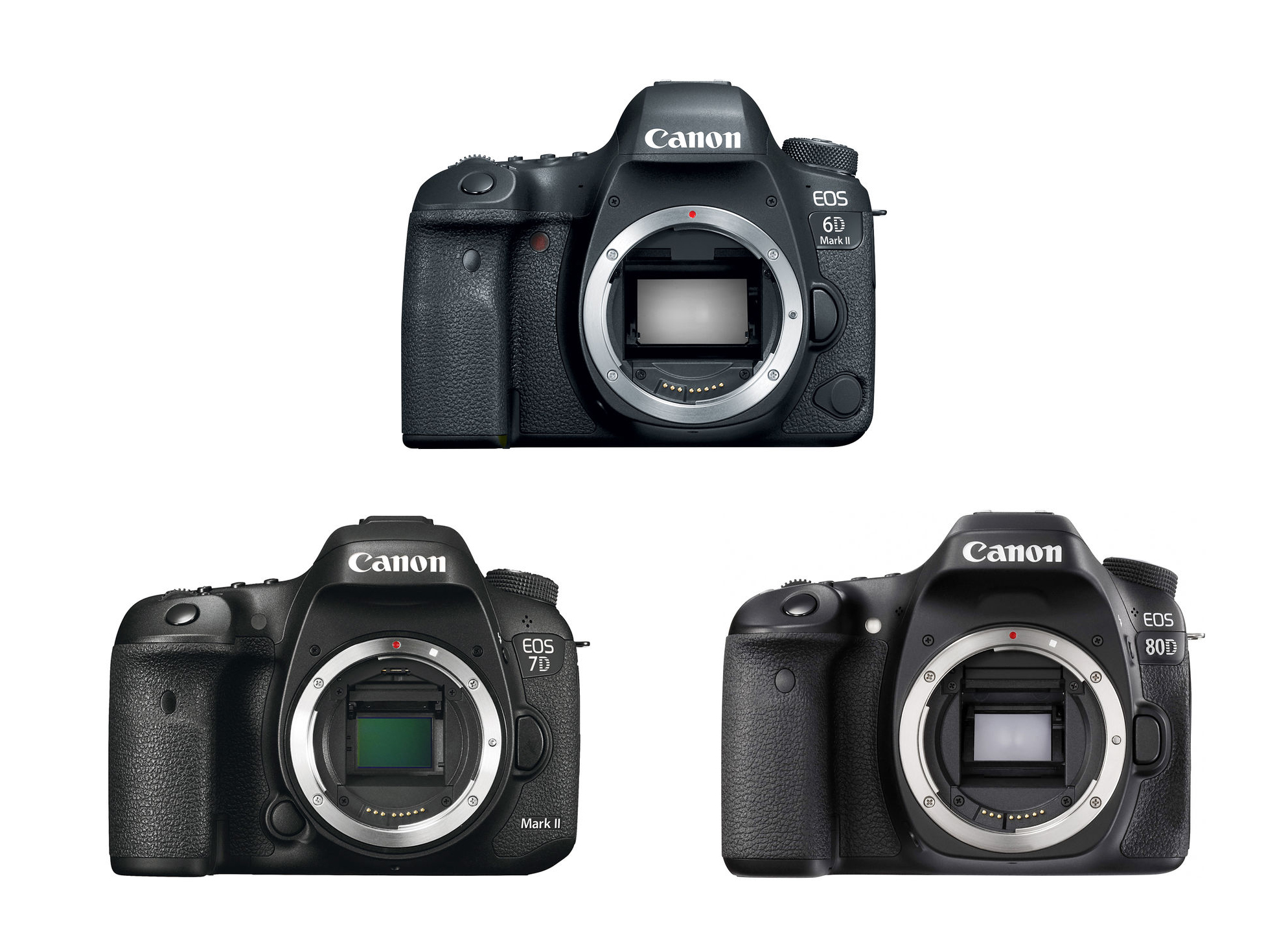 Canon 6D Mark II Vs. 7D Mark II Vs. 80D Specs Comparison – Canon ...